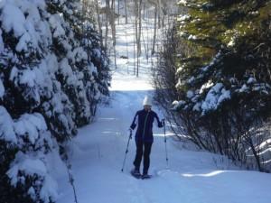 ski-de-fond-web